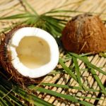 Reasons Coconut Oil has Become Very Popular across the Globe